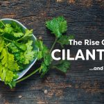 https://medium.com/@misterpeej/the-rise-of-cilantro-and-i-hate-it-7d3b26719e11